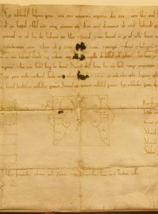 historia y patrimonio - carta villazgo